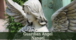Guardian Angel Nanael