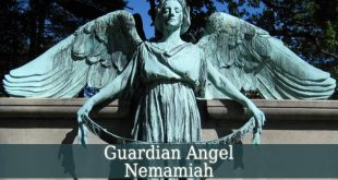 Guardian Angel Nemamiah