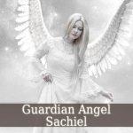 Guardian Angel Sachiel