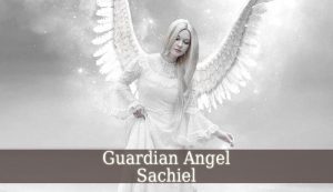 Guardian Angel Sachiel