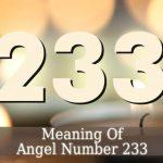 233 Angel Number