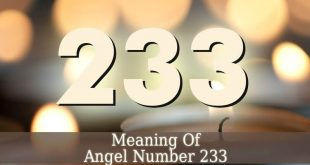 233 Angel Number