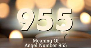 955 Angel Number